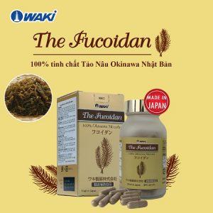 The-Fucoidan-6